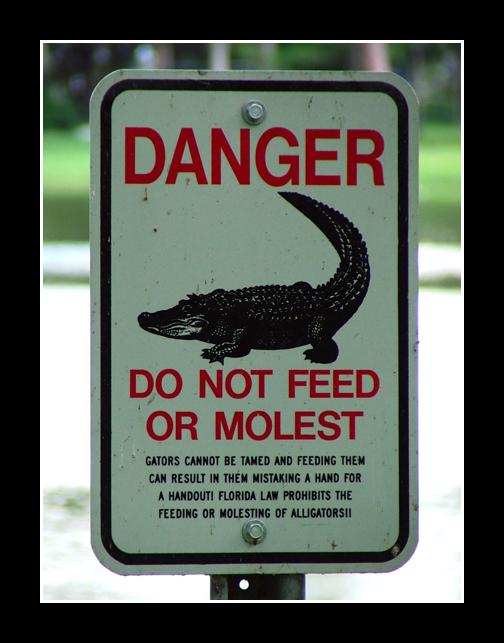 gator_molesters_beware_by_captbogart